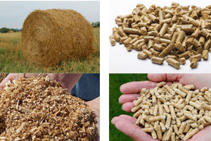 What are the raw materials of wood pellet machine?